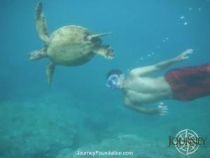 Journey Hawaii